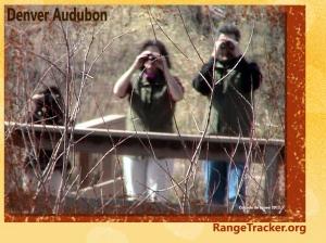 Denver Audubon RangeTracker (10)