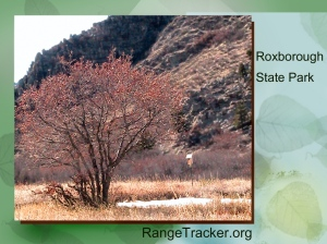 Roxborough RangeTracker (30)
